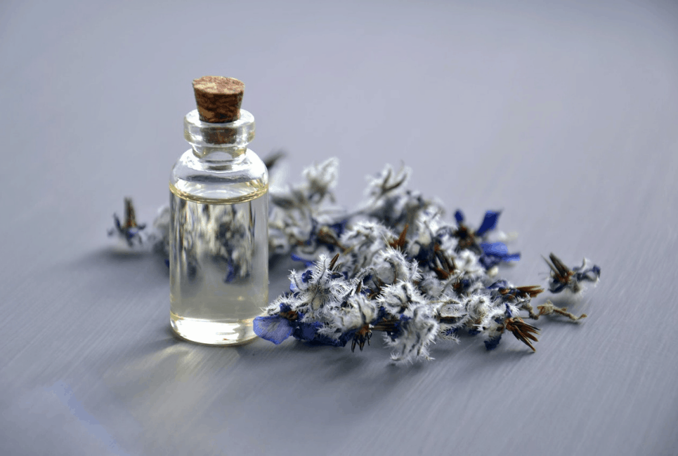 Best Lavender Perfume Guide