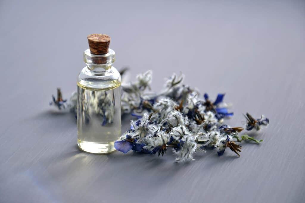 lavander perfume options
